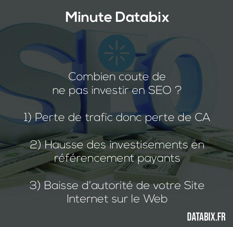 databix-combien-coute-de-ne-pas-investir-en-seo