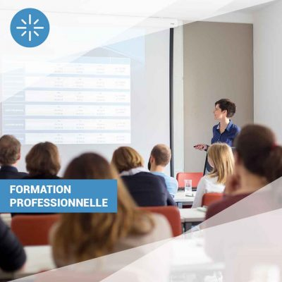 https://databix.co/wp-content/uploads/2020/03/formation-professsionelle-400x400.jpg